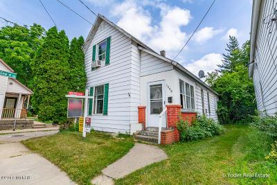 Grand Rapids Single Family Home For Sale: 1048 Helen Street NE