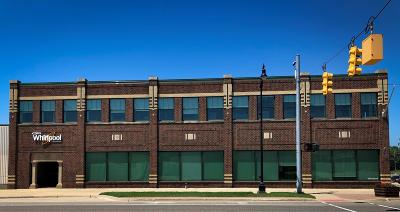 Berrien County Commercial For Sale: 133 W Main St Street
