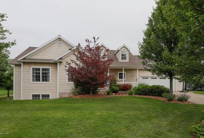 Kalamazoo County Single Family Home For Sale: 659 Autumns Way Boulevard