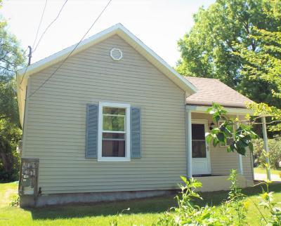 Newaygo County Single Family Home For Sale: 34 E Washington