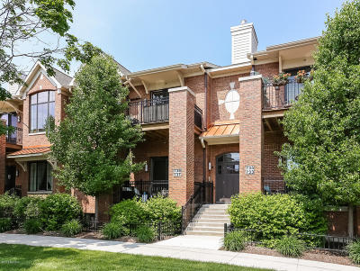 East Grand Rapids Condo/Townhouse For Sale: 737 Bagley Avenue SE #5