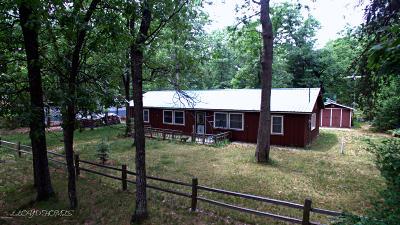Single Family Home For Sale: 11897 S Dutch Elm Avenue