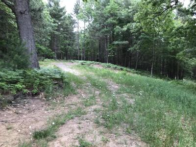 Benzie County, Charlevoix County, Clare County, Emmet County, Grand Traverse County, Kalkaska County, Lake County, Leelanau County, Manistee County, Mason County, Missaukee County, Osceola County, Roscommon County, Wexford County Residential Lots & Land For Sale: Cherry