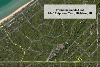 New Buffalo Residential Lots & Land For Sale: 4040 Chippewa Trail