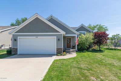 Allendale Single Family Home For Sale: 6196 Balcom Lane