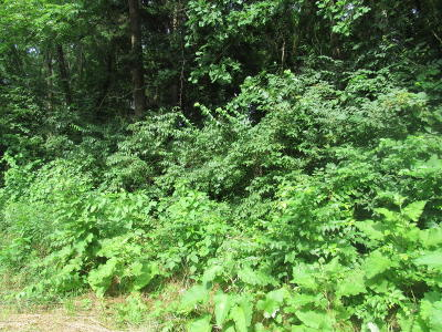 Niles Residential Lots & Land For Sale: Mayflower Road