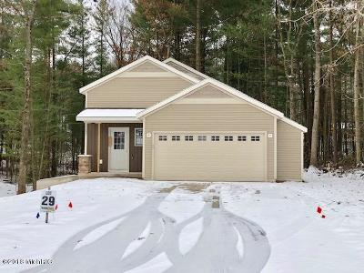 Newaygo County Single Family Home For Sale: 732 W River Hills Drive