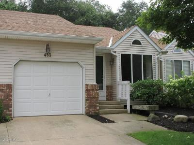 Allegan County Condo/Townhouse For Sale: 453 Amity Lane