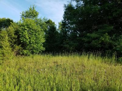 Middleville Residential Lots & Land For Sale: Parcel C Griffeth Drive