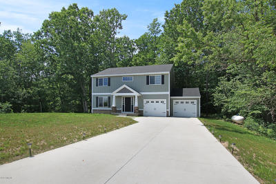 Sand Lake Single Family Home For Sale: 225 Andrea Drive