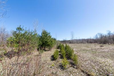 Berrien County Residential Lots & Land For Sale: 8249 M-139 #Parcel B