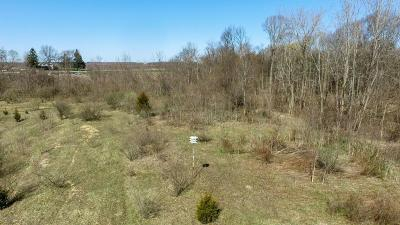 Berrien Springs Residential Lots & Land For Sale: Edgewater Court #Parcel C