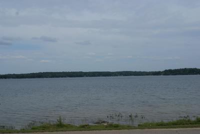 Chippewa Lake, Evart, Rodney Residential Lots & Land For Sale: Tbd W Chippewa Drive