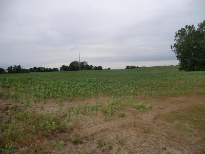Branch County, Hillsdale County Residential Lots & Land For Sale: State Line Road
