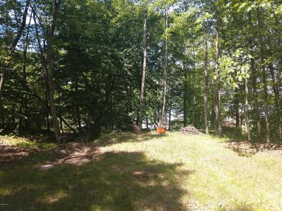 Residential Lots & Land For Sale: 9858 Chippewa Street