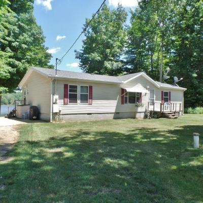 White Cloud Single Family Home For Sale: 7607 E 5 Mile Road