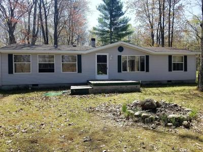 Missaukee County Single Family Home For Sale: 9645 W Moorestown Road