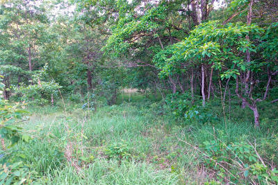 Branch Residential Lots & Land For Sale: Whistling Pete Ave Lot 169