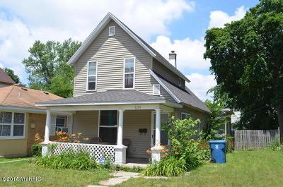 Single Family Home For Sale: 635 Worden Street SE