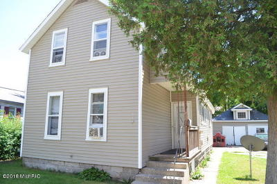 Grand Rapids Single Family Home For Sale: 900 Baxter Street SE