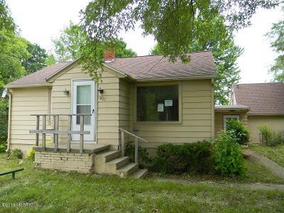 Mount Pleasant Single Family Home For Sale: 927 E Remus Road