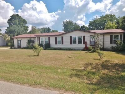 Mecosta County Single Family Home For Sale: 20889 Ross Parkway