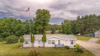 Osceola County Single Family Home For Sale: 1240 S 170th Avenue