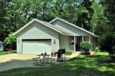 Allegan MI Single Family Home For Sale: $197,500