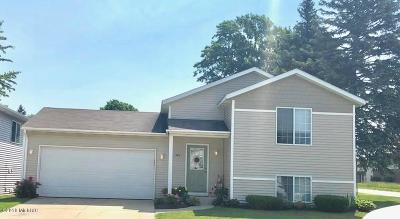 Holland Single Family Home For Sale: 983 Sagewood Court