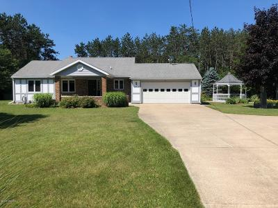 Barry County Single Family Home For Sale: 373 Stauffer Drive