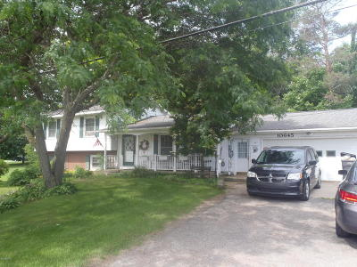Allendale Single Family Home For Sale: 10645 68th Avenue