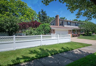 St. Joseph Single Family Home For Sale: 1009 St. Joseph Drive