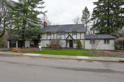 Kalamazoo Single Family Home For Sale: 1410 Low Road