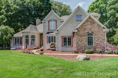 Grand Rapids Single Family Home For Sale: 10455 Country Trail Court