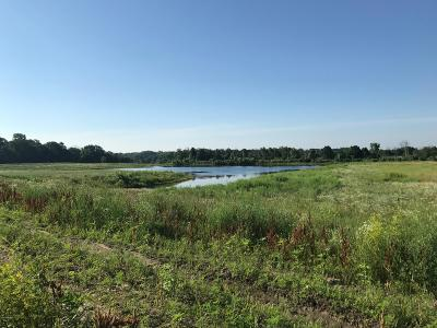 Allendale Residential Lots & Land For Sale: 12451 60th Avenue