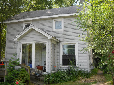 Single Family Home For Sale: 205 W Montcalm Street