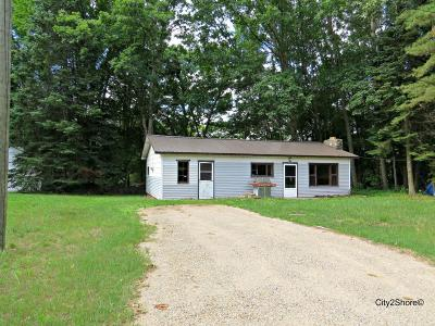 Isabella County Single Family Home For Sale: 8911 Ridge Road
