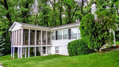 Van Buren County Single Family Home For Sale: 60121 E Oak Drive