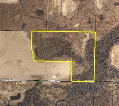 Paw Paw Residential Lots & Land For Sale: 44th Avenue