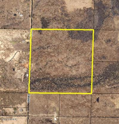 Paw Paw Residential Lots & Land For Sale: 41st Street