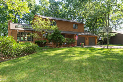 Kalamazoo Single Family Home For Sale: 9820 Oak Forest Circle
