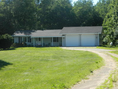 New Era Single Family Home For Sale: 7044 W Stony Lake Rd. Road