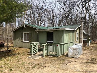 Newaygo County Single Family Home For Sale: 8966 26th Avenue