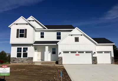 Single Family Home For Sale: 1287 Starlite Drive