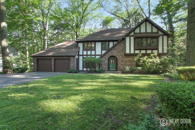Holland, West Olive Single Family Home For Sale: 195 Portchester Road