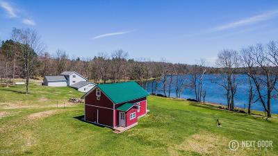 Evart Single Family Home For Sale: 9807 Strawberry Lake Drive