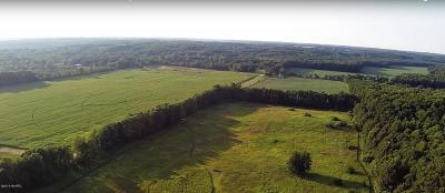Branch County, Hillsdale County Residential Lots & Land For Sale: 2505 E Mosherville Road #VL