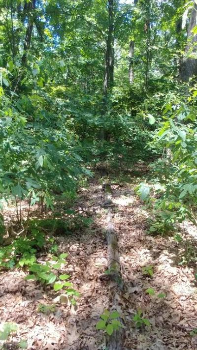 New Buffalo Residential Lots & Land For Sale: Lots 18&19 Comanche Trail
