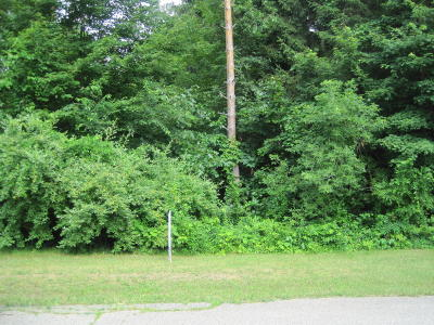 Gobles Residential Lots & Land For Sale: 409 Logan Lane
