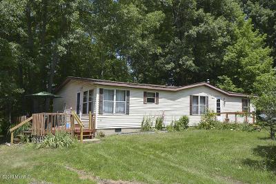 Van Buren County Single Family Home For Sale: 29540 653